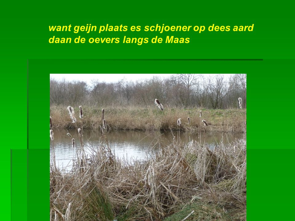Dat stökske Limburg, heij aan de Maas…