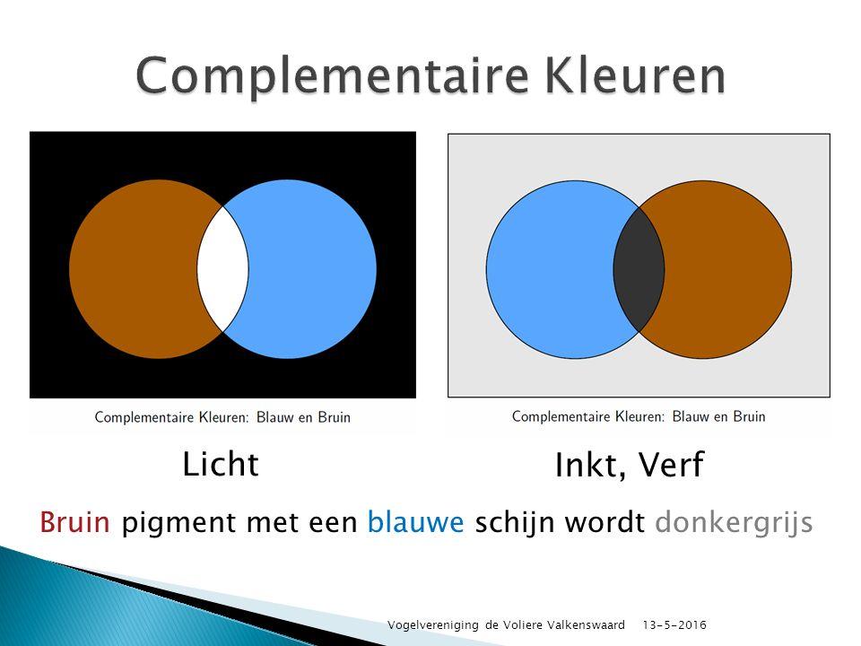 Licht Inkt, Verf Bruin pigment met een blauwe schijn wordt donkergrijs 13-5-2016 Vogelvereniging de Voliere Valkenswaard