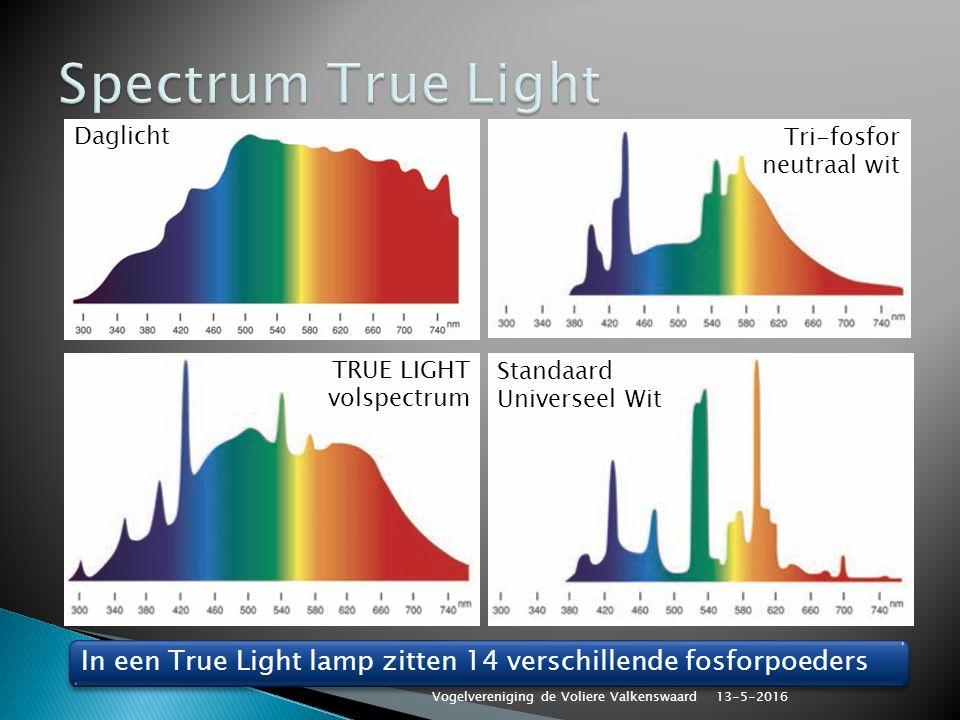 Standaard Universeel Wit TRUE LIGHT volspectrum Daglicht Tri-fosfor neutraal wit In een True Light lamp zitten 14 verschillende fosforpoeders 13-5-2016 Vogelvereniging de Voliere Valkenswaard