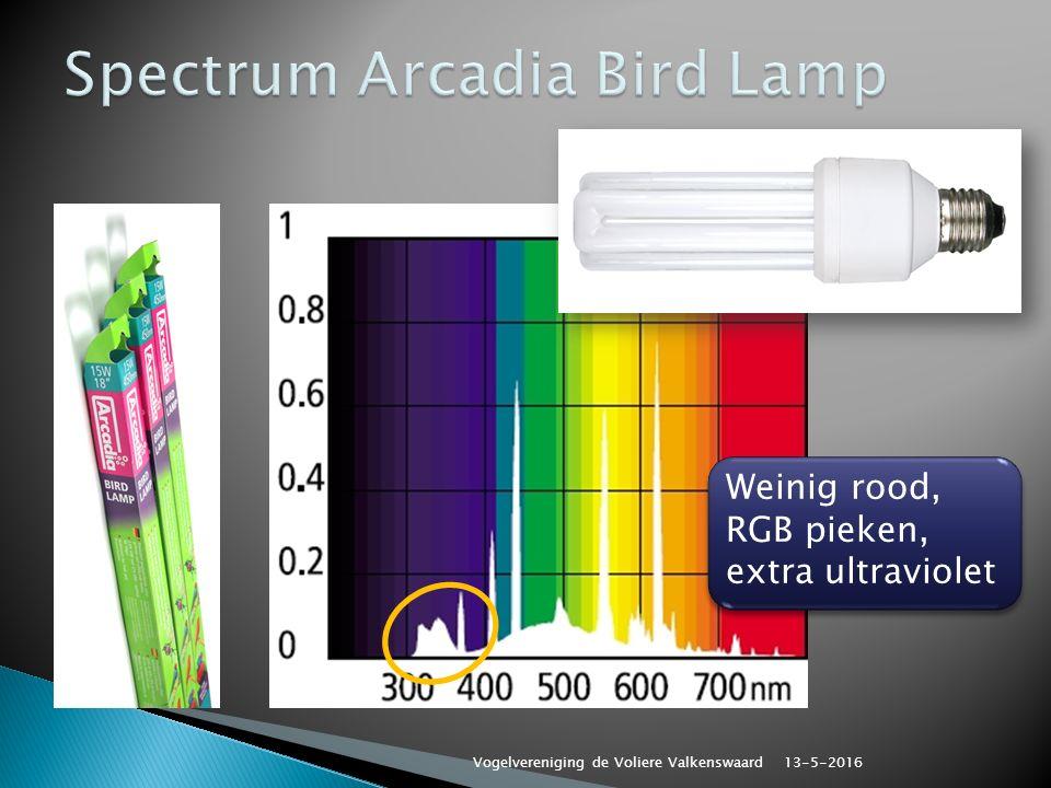 Weinig rood, RGB pieken, extra ultraviolet Weinig rood, RGB pieken, extra ultraviolet 13-5-2016 Vogelvereniging de Voliere Valkenswaard