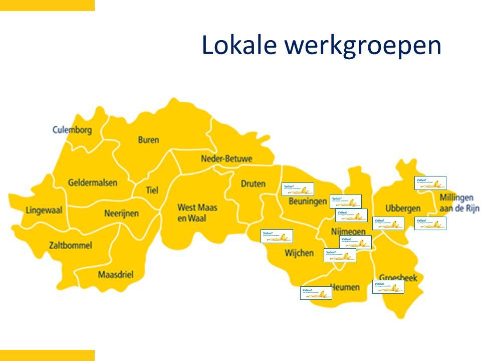 Lokale werkgroepen