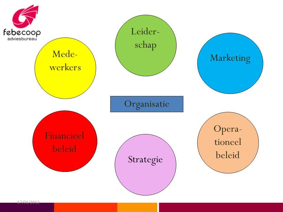 Strategie Opera- tioneel beleid Marketing Mede- werkers Leider- schap Financieel beleid Organisatie 17/01/2012