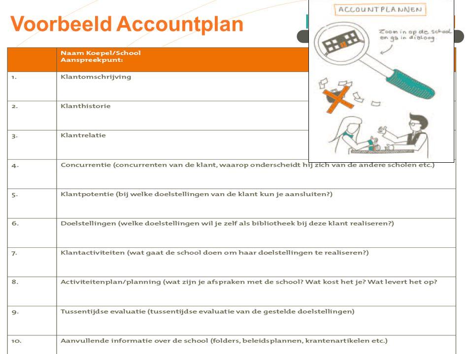 Voorbeeld Accountplan