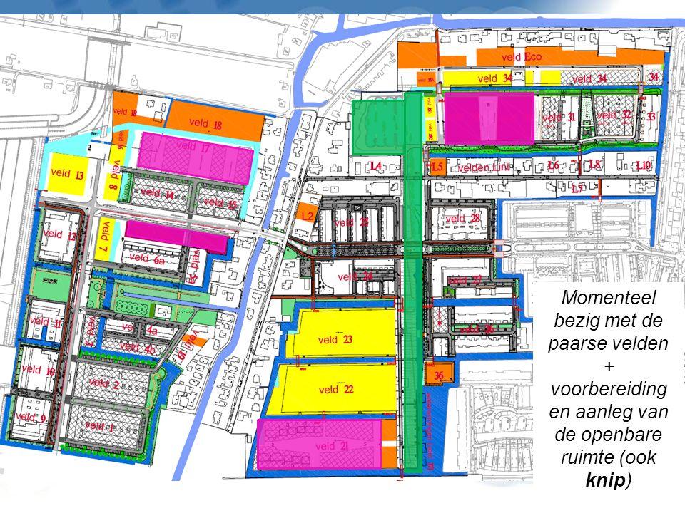 Momenteel bezig met de paarse velden + voorbereiding en aanleg van de openbare ruimte (ook knip)