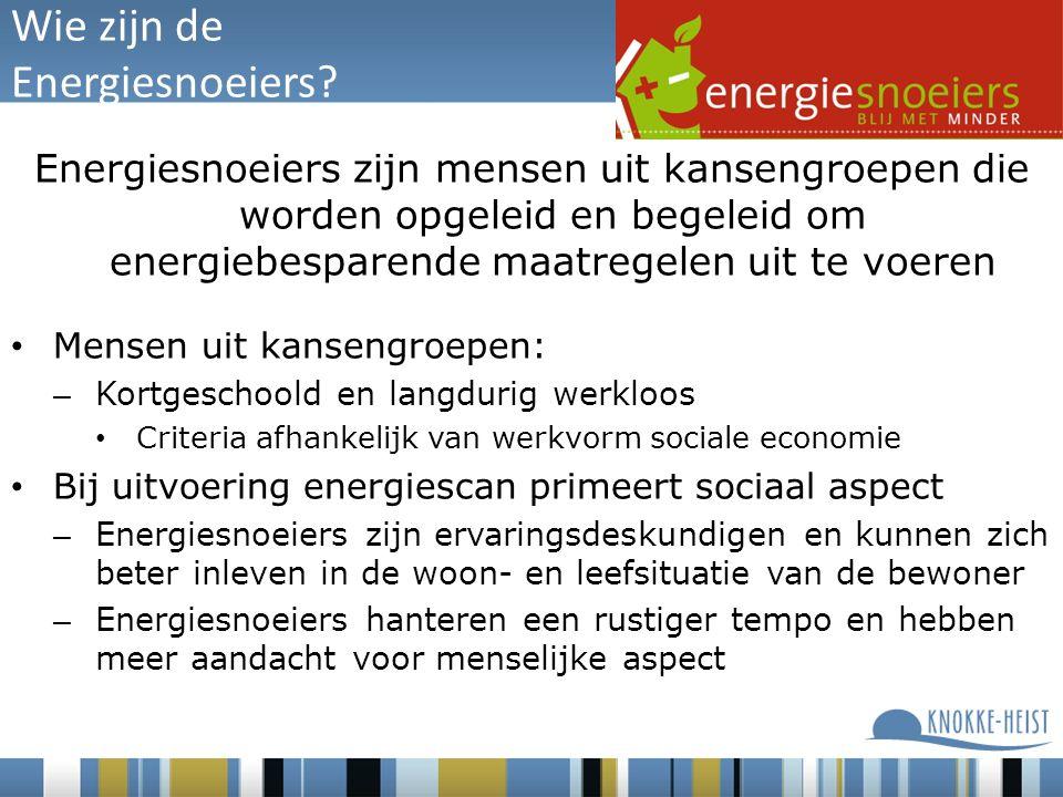 Wie zijn de Energiesnoeiers.