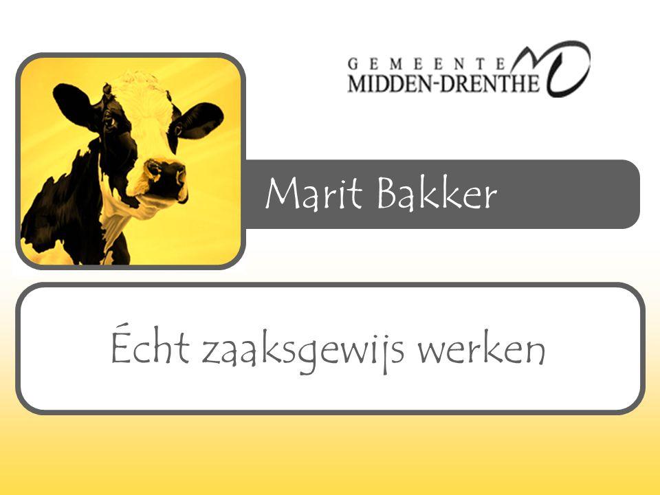 Marit Bakker Écht zaaksgewijs werken
