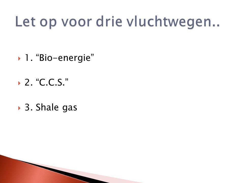  1. Bio-energie  2. C.C.S.  3. Shale gas