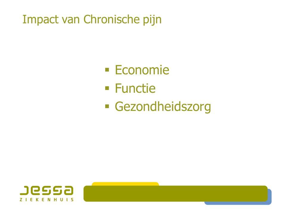 Impact van Chronische pijn  Economie  Functie  Gezondheidszorg