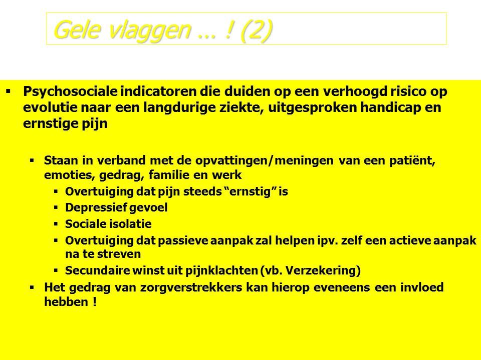 Gele vlaggen … ! (2)  Psychosociale indicatoren die duiden op een verhoogd risico op evolutie naar een langdurige ziekte, uitgesproken handicap en er