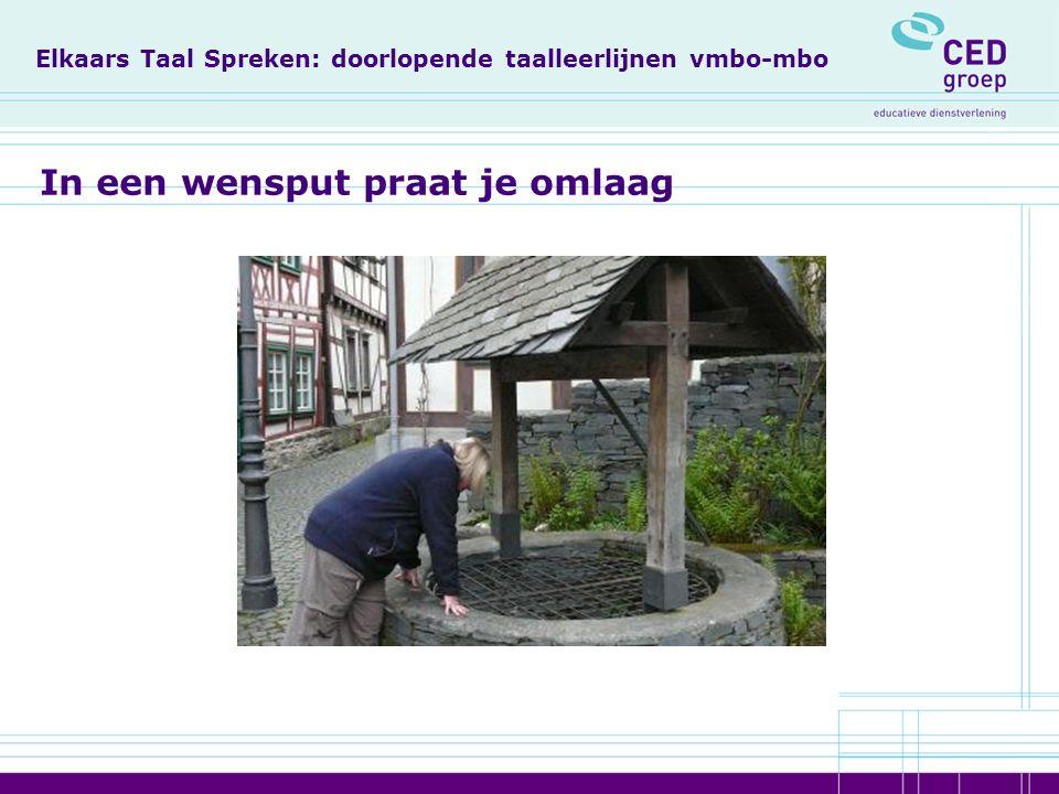 Rapport Meijerink Domeinen Domein 1: Mondelinge vaardigheid Domein 2: Leesvaardigheid Domein 3: Schrijfvaardigheid Domein 4: Taalbeschouwing en -verzorging