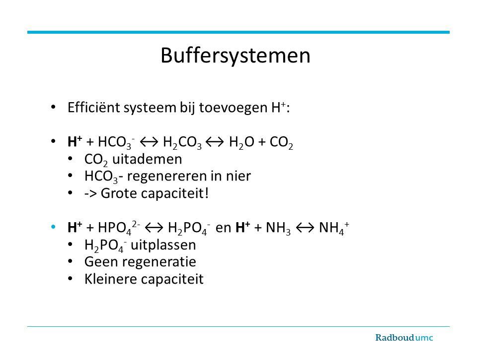 Buffersystemen Efficiënt systeem bij toevoegen H + : H + + HCO 3 - ↔ H 2 CO 3 ↔ H 2 O + CO 2 CO 2 uitademen HCO 3 - regenereren in nier -> Grote capaciteit.