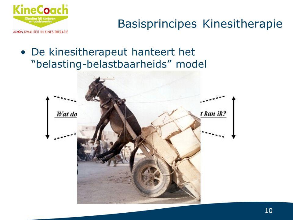 10 Basisprincipes Kinesitherapie De kinesitherapeut hanteert het belasting-belastbaarheids model