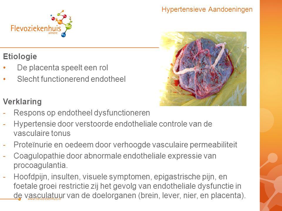 Etiologie De placenta speelt een rol Slecht functionerend endotheel Verklaring -Respons op endotheel dysfunctioneren -Hypertensie door verstoorde endotheliale controle van de vasculaire tonus -Proteïnurie en oedeem door verhoogde vasculaire permeabiliteit -Coagulopathie door abnormale endotheliale expressie van procoagulantia.