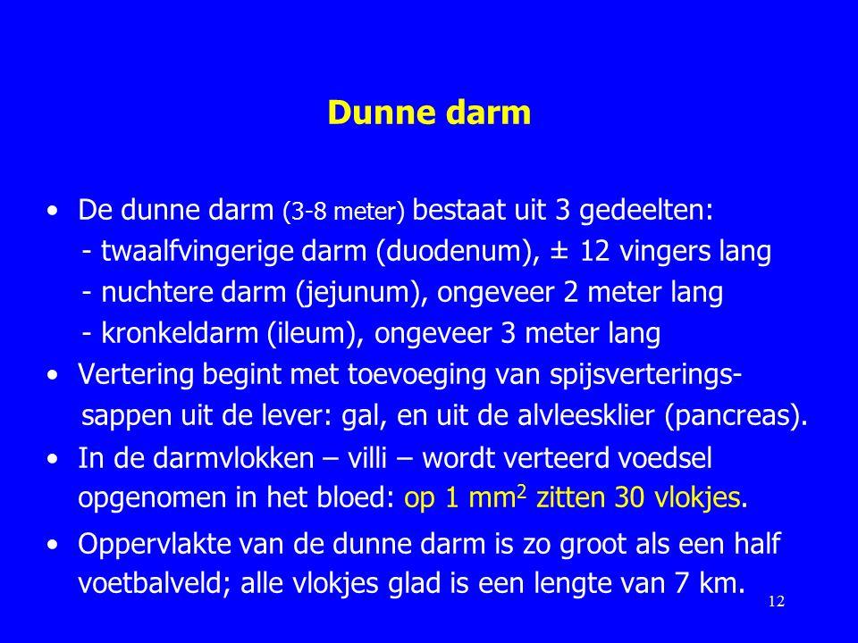 Dunne darm De dunne darm (3-8 meter) bestaat uit 3 gedeelten: - twaalfvingerige darm (duodenum), ± 12 vingers lang - nuchtere darm (jejunum), ongeveer 2 meter lang - kronkeldarm (ileum), ongeveer 3 meter lang Vertering begint met toevoeging van spijsverterings- sappen uit de lever: gal, en uit de alvleesklier (pancreas).