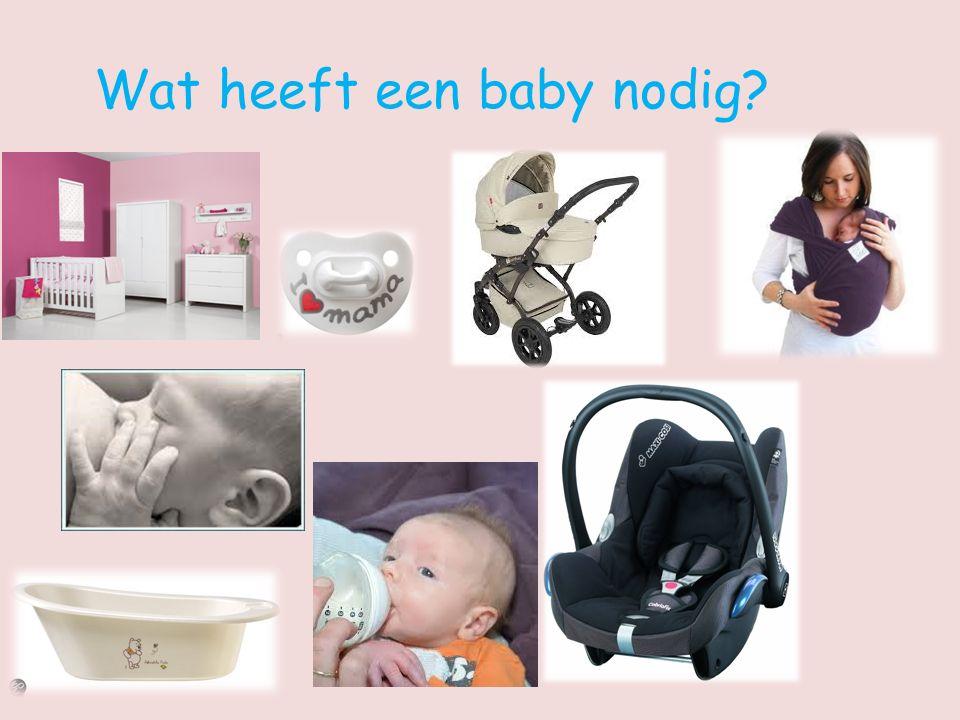 Wat heeft een baby nodig?