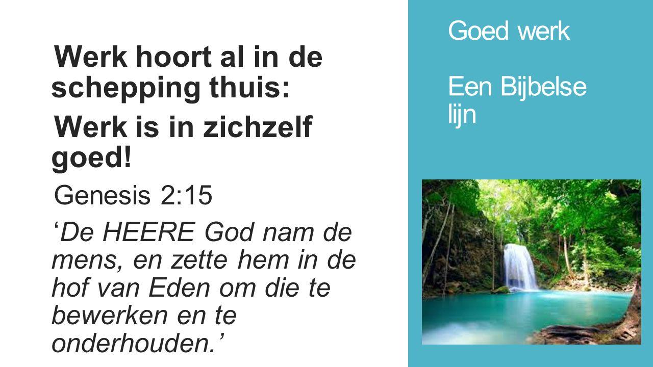 Goed werk Een Bijbelse lijn Werk hoort al in de schepping thuis: Werk is in zichzelf goed.