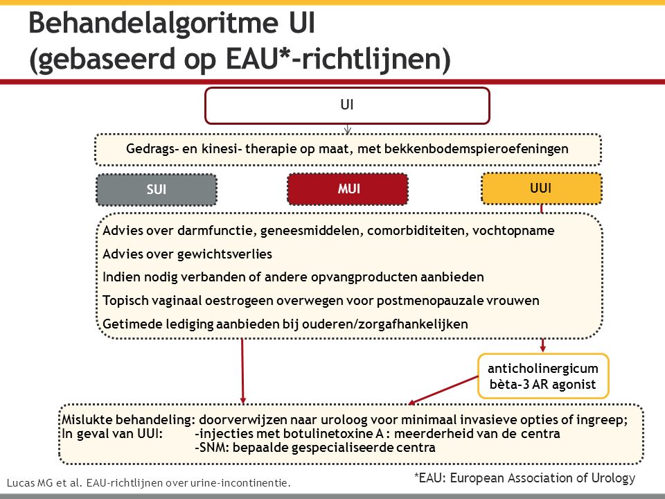 Behandelalgoritme UI (gebaseerd op EAU*-richtlijnen) Lucas MG et al.