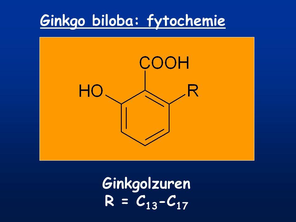 Ginkgo biloba: fytochemie Ginkgolzuren R = C 13 -C 17