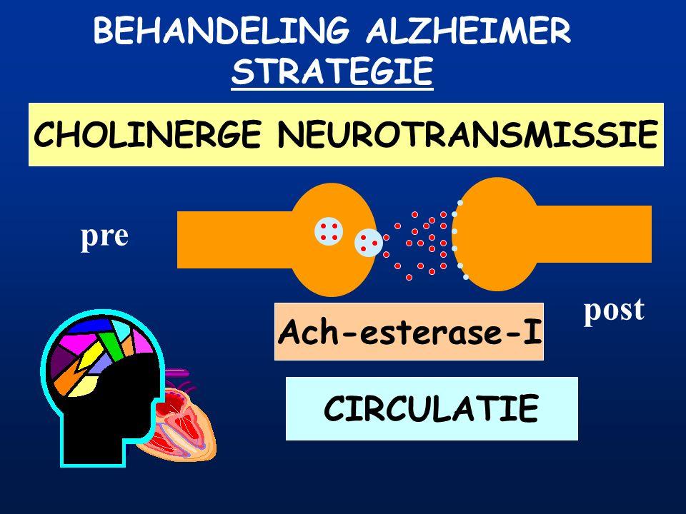 BEHANDELING ALZHEIMER STRATEGIE CHOLINERGE NEUROTRANSMISSIE CIRCULATIE pre post Ach-esterase Ach-esterase-I