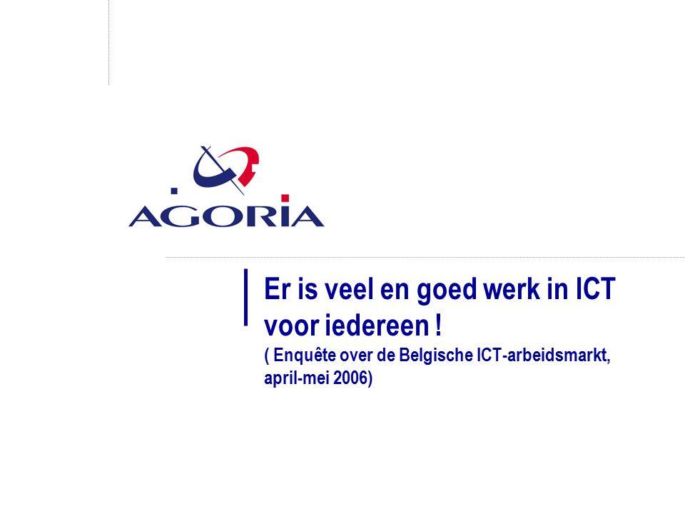 Er is veel en goed werk in ICT voor iedereen .