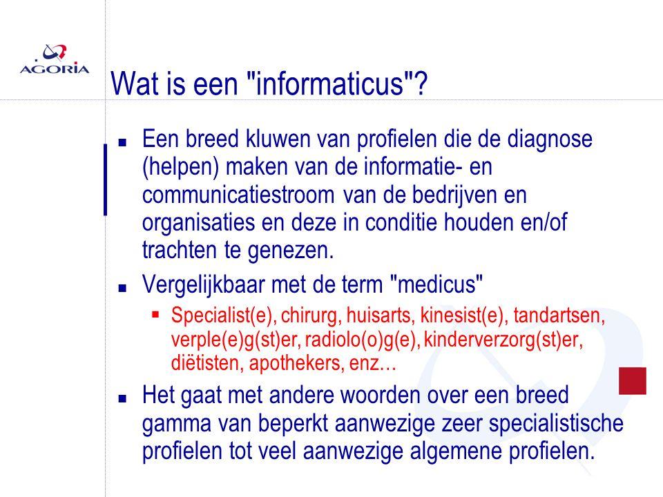 Wat is een informaticus .