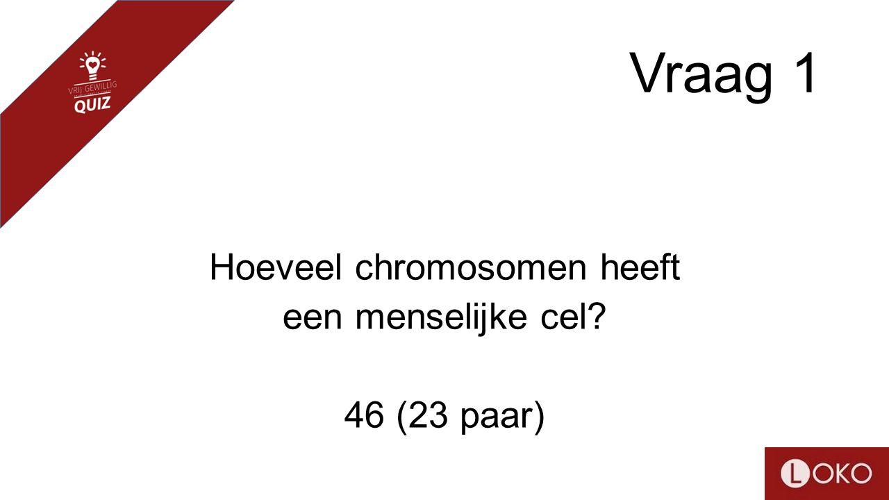 Vraag 1 Hoeveel chromosomen heeft een menselijke cel? 46 (23 paar)