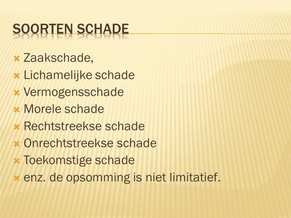  Zaakschade,  Lichamelijke schade  Vermogensschade  Morele schade  Rechtstreekse schade  Onrechtstreekse schade  Toekomstige schade  enz.