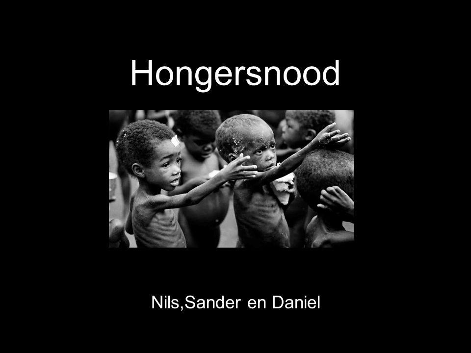 Hongersnood Nils,Sander en Daniel