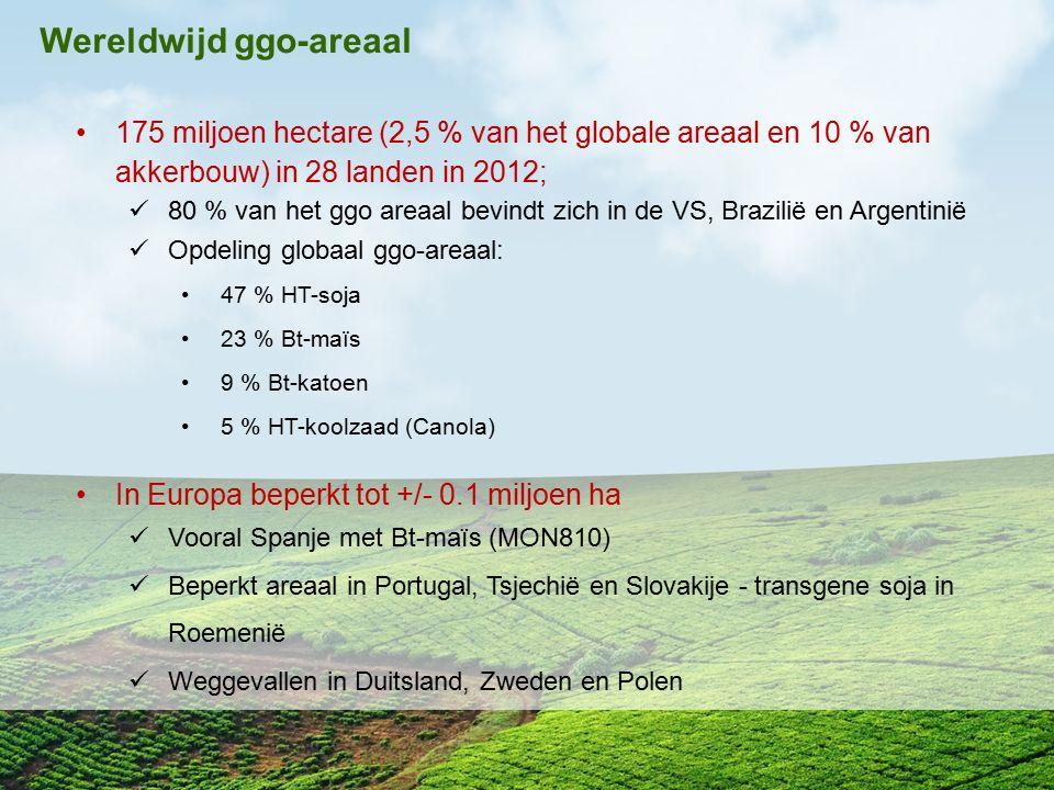 175 miljoen hectare (2,5 % van het globale areaal en 10 % van akkerbouw) in 28 landen in 2012; 80 % van het ggo areaal bevindt zich in de VS, Brazilië