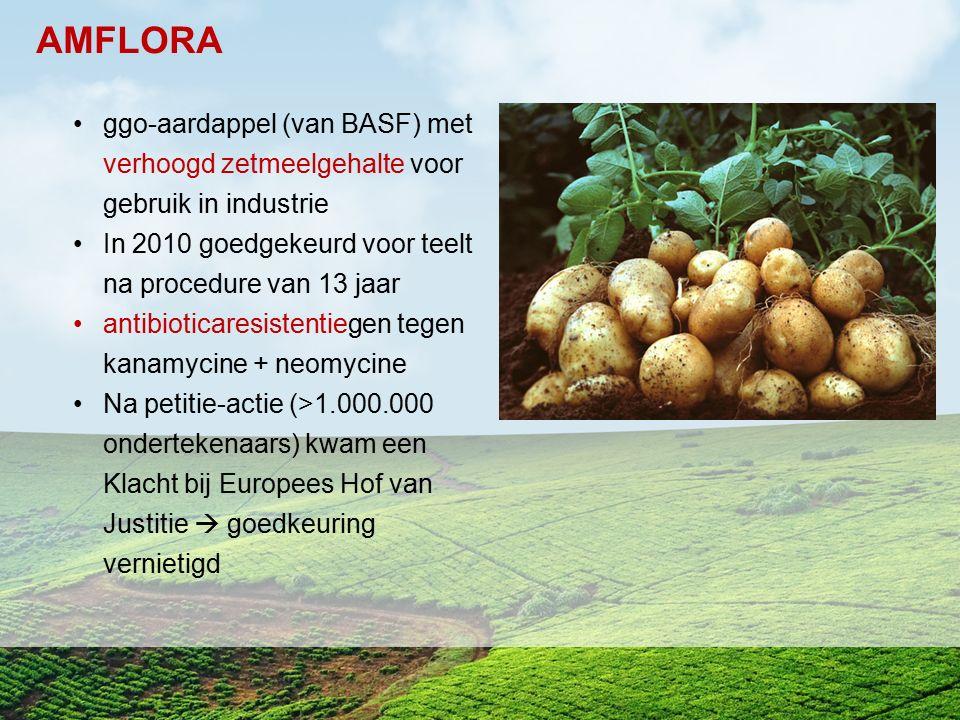 ggo-aardappel (van BASF) met verhoogd zetmeelgehalte voor gebruik in industrie In 2010 goedgekeurd voor teelt na procedure van 13 jaar antibioticaresi