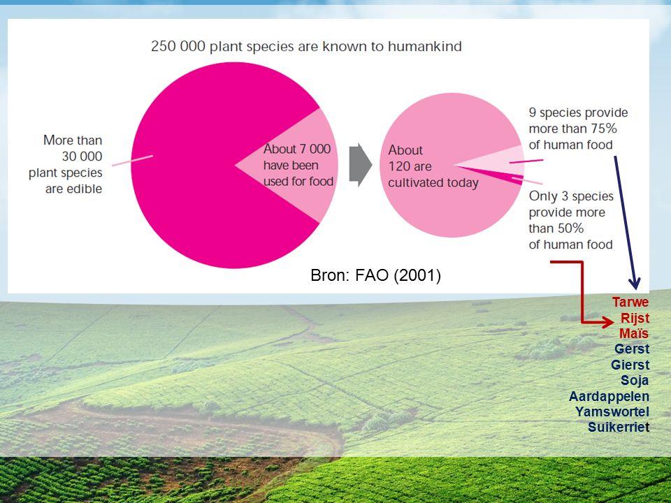 Tarwe Rijst Maïs Gerst Gierst Soja Aardappelen Yamswortel Suikerriet Bron: FAO (2001)