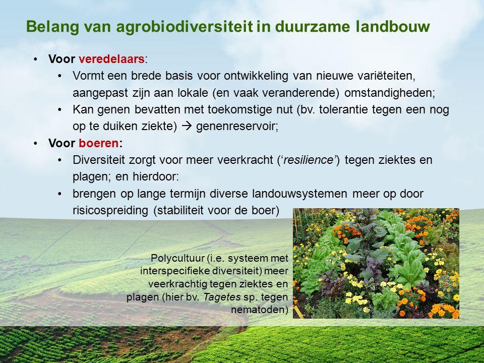 Belang van agrobiodiversiteit in duurzame landbouw Voor veredelaars: Vormt een brede basis voor ontwikkeling van nieuwe variëteiten, aangepast zijn aa