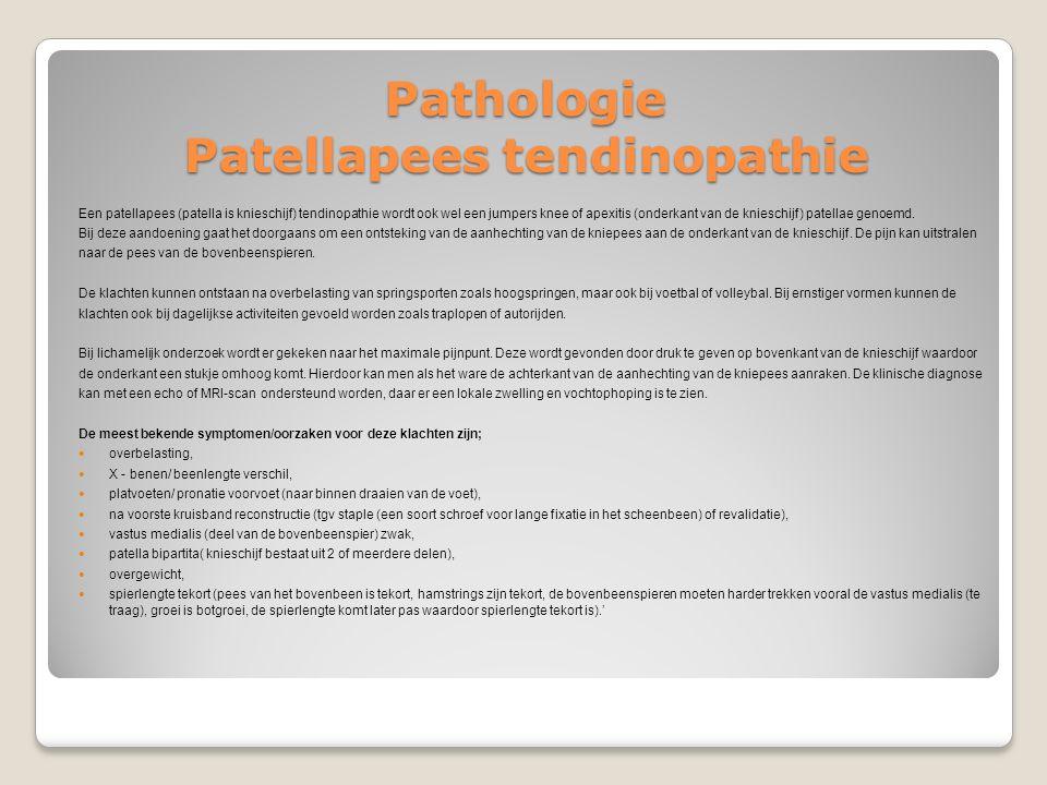 Pathologie Patellapees tendinopathie Een patellapees (patella is knieschijf) tendinopathie wordt ook wel een jumpers knee of apexitis (onderkant van d