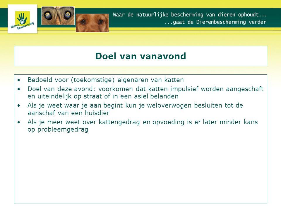 Doel 2 Ongeveer 3,5 miljoen katten in Nederland Vaak gekozen omdat ze makkelijk zijn, door mensen die vaak van huis zijn Echter: ook een kat heeft behoeften en als daar niet aan wordt voldaan, ontstaat er probleemgedrag