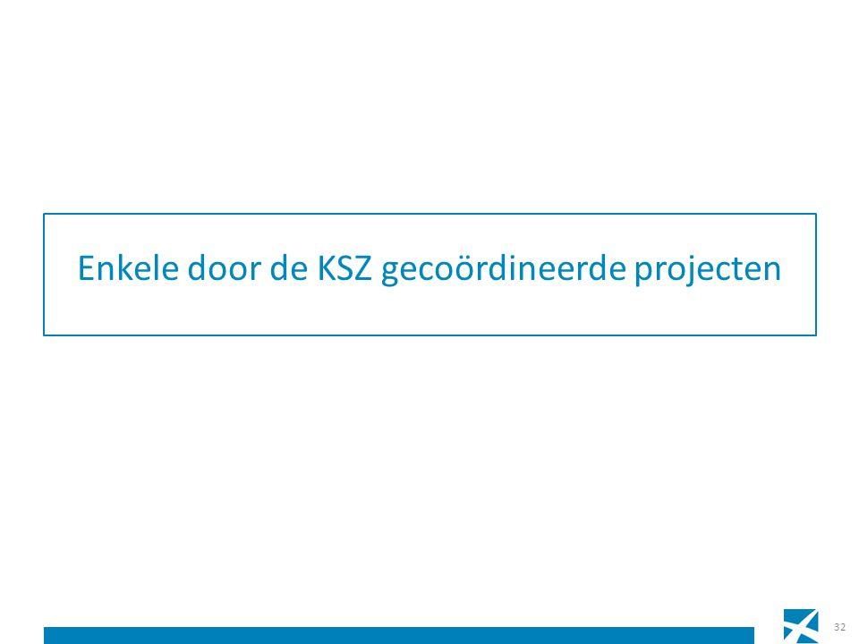 Enkele door de KSZ gecoördineerde projecten 32