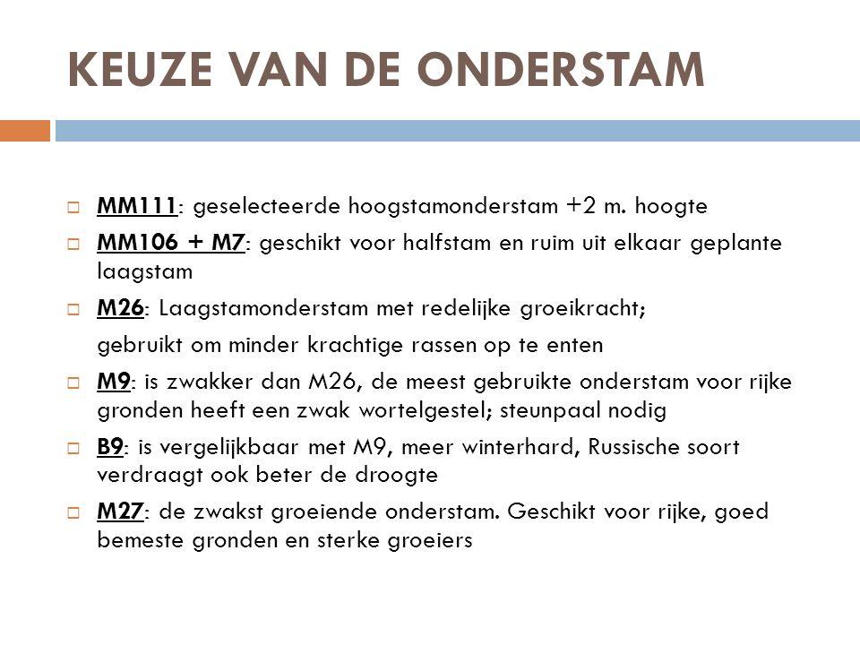 KEUZE VAN DE ONDERSTAM  MM111: geselecteerde hoogstamonderstam +2 m. hoogte  MM106 + M7: geschikt voor halfstam en ruim uit elkaar geplante laagstam