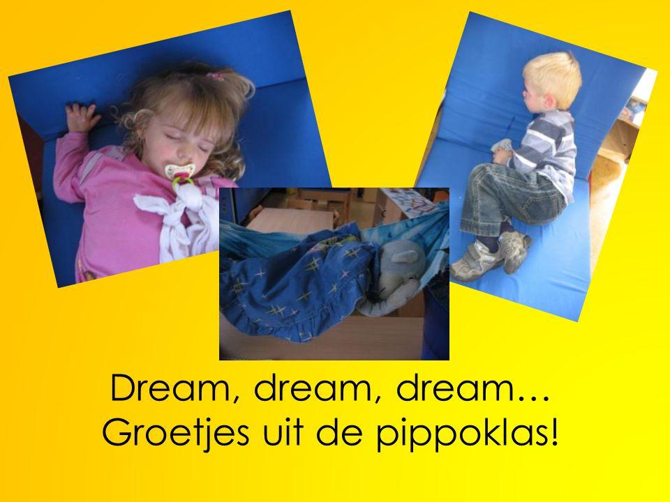 Dream, dream, dream… Groetjes uit de pippoklas!