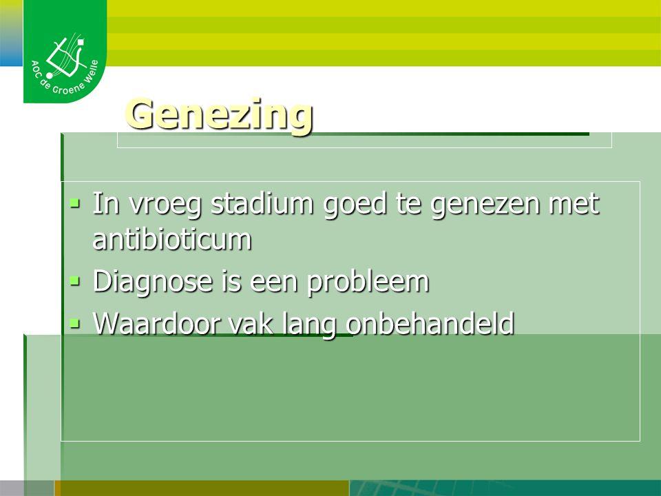 Genezing  In vroeg stadium goed te genezen met antibioticum  Diagnose is een probleem  Waardoor vak lang onbehandeld