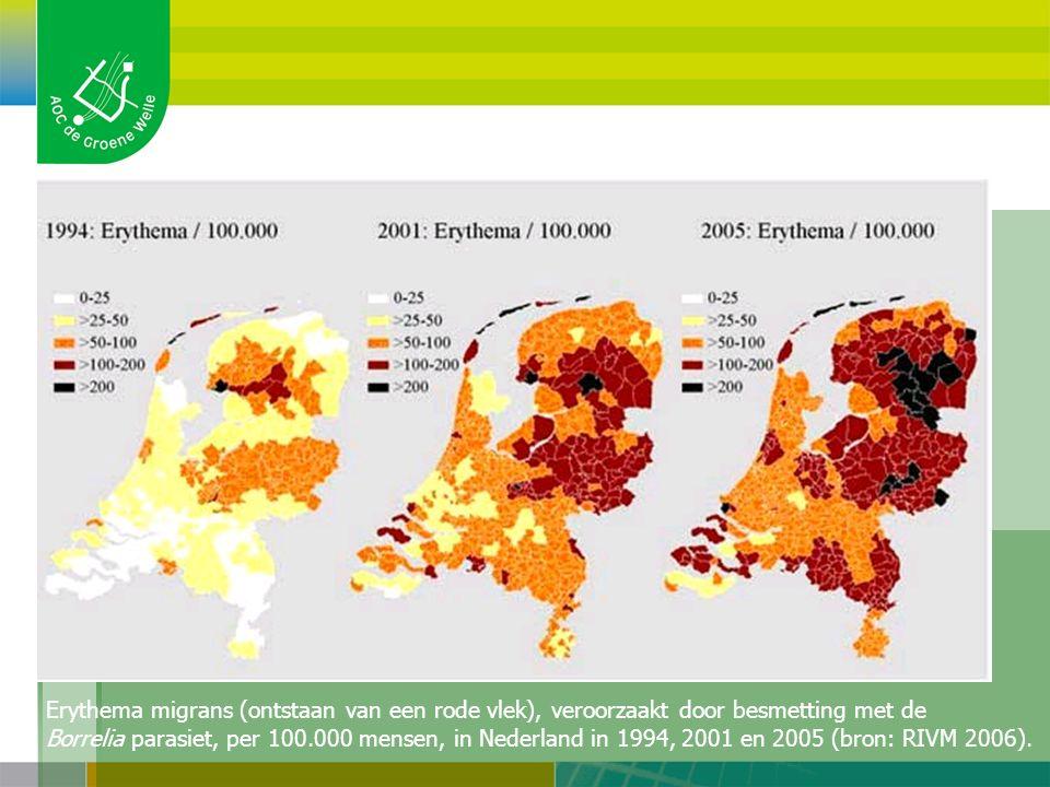 Ontwikkeling van de ziekte in NL Erythema migrans (ontstaan van een rode vlek), veroorzaakt door besmetting met de Borrelia parasiet, per 100.000 mensen, in Nederland in 1994, 2001 en 2005 (bron: RIVM 2006).