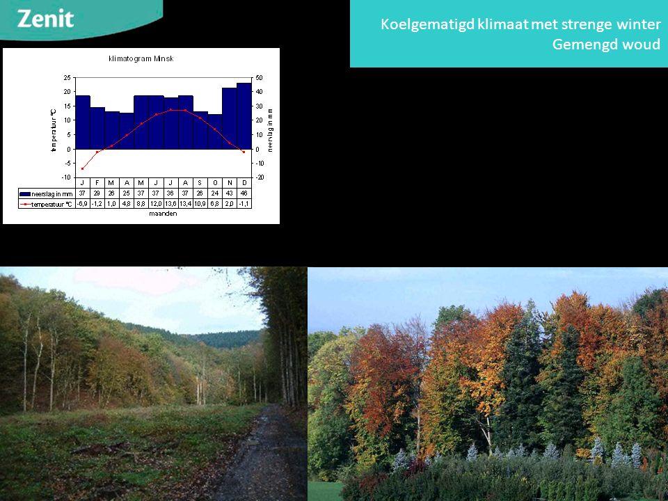 Koelgematigd klimaat met strenge winter Gemengd woud