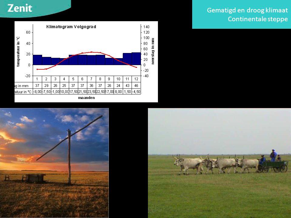 Gematigd en droog klimaat Continentale steppe