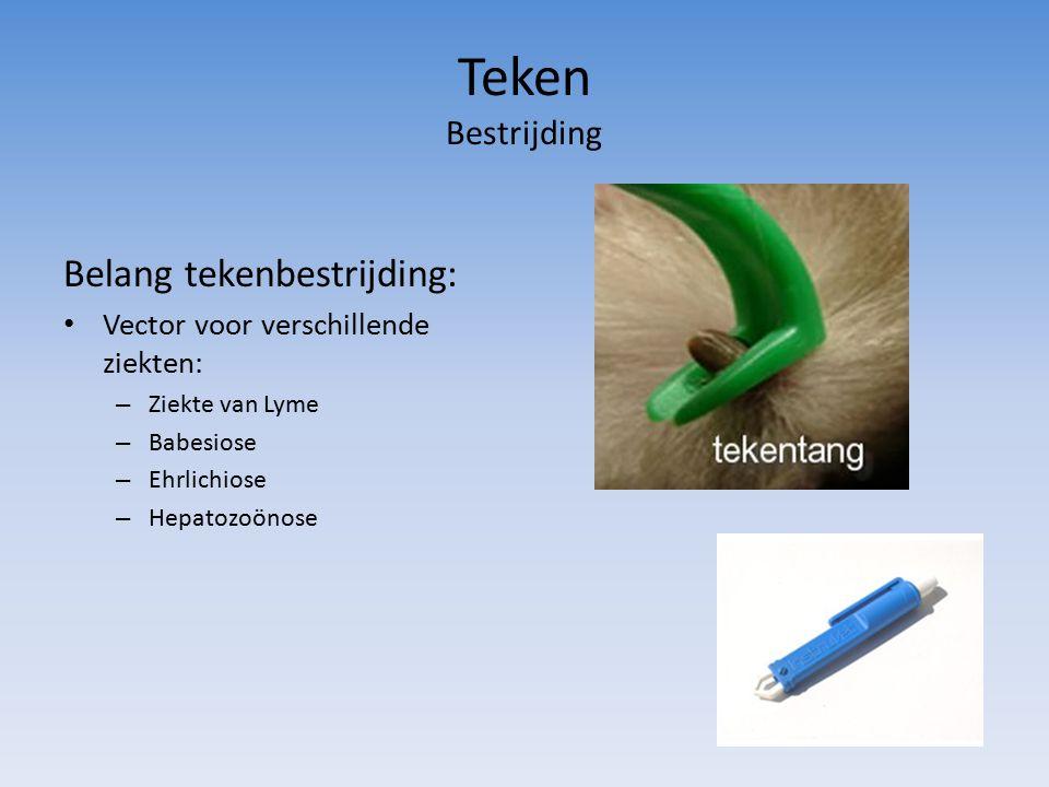 Teken Bestrijding Belang tekenbestrijding: Vector voor verschillende ziekten: – Ziekte van Lyme – Babesiose – Ehrlichiose – Hepatozoönose