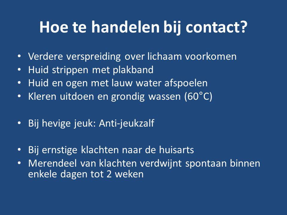 Hoe te handelen bij contact.
