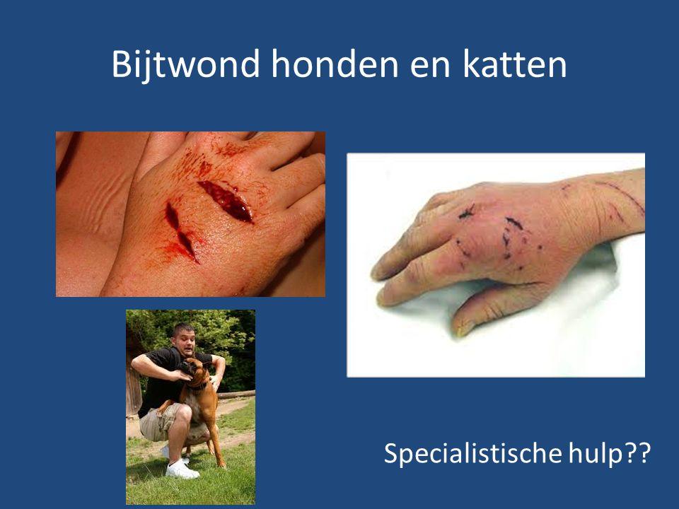 Bijtwond honden en katten Specialistische hulp??