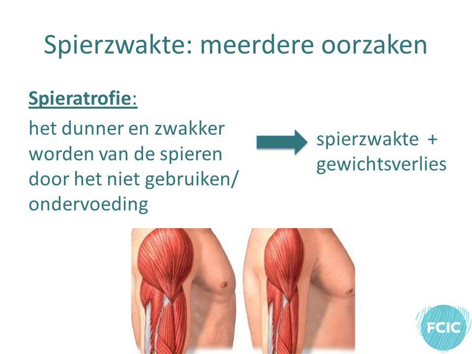 Spierzwakte: meerdere oorzaken Spieratrofie: het dunner en zwakker worden van de spieren door het niet gebruiken/ ondervoeding spierzwakte + gewichtsverlies