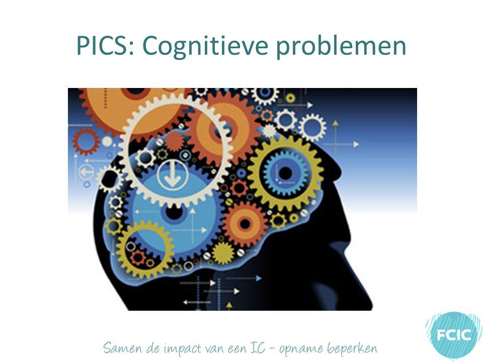 PICS: Cognitieve problemen