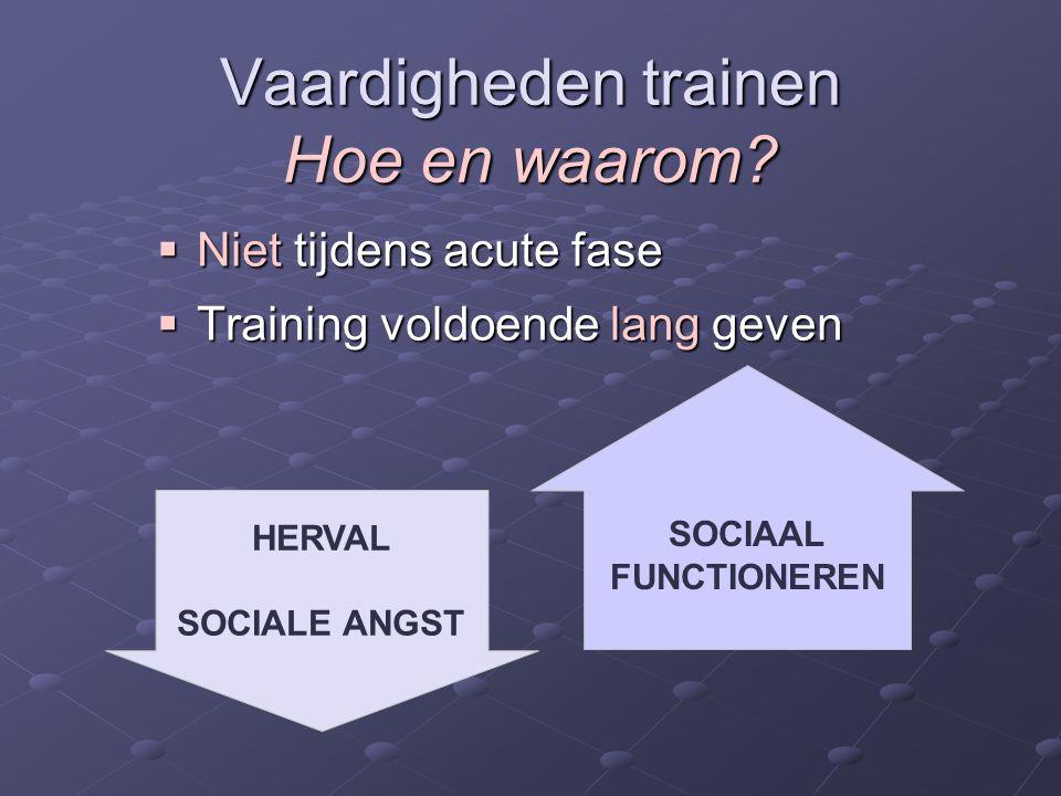 Vaardigheden trainen Hoe en waarom?  Niet tijdens acute fase  Training voldoende lang geven SOCIAAL FUNCTIONEREN HERVAL SOCIALE ANGST
