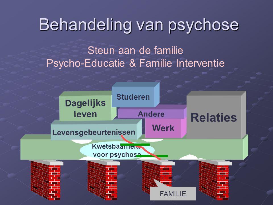 Levensgebeurtenissen Werk Dagelijks leven Andere Relaties Kwetsbaarheid voor psychose Studeren Behandeling van psychose Steun aan de familie Psycho-Educatie & Familie Interventie FAMILIE