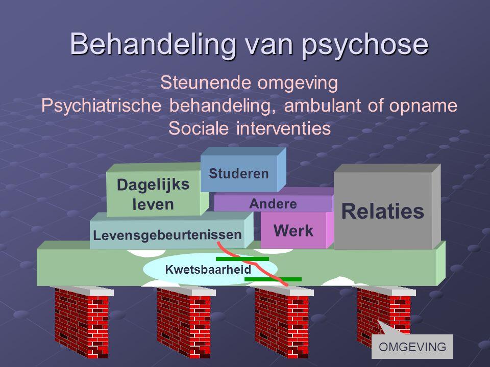 Levensgebeurtenissen Werk Dagelijks leven Andere Relaties Kwetsbaarheid Studeren Behandeling van psychose Steunende omgeving Psychiatrische behandeling, ambulant of opname Sociale interventies OMGEVING