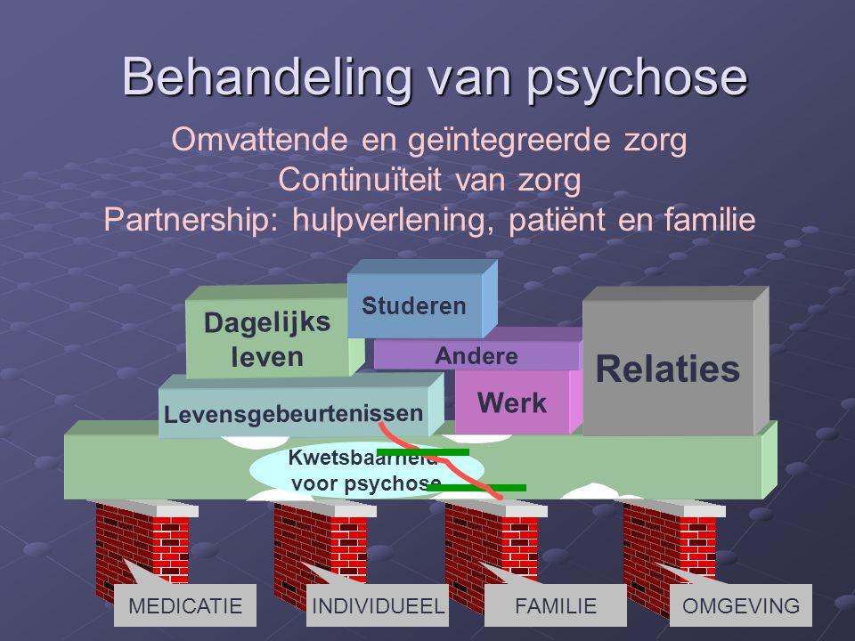 Levensgebeurtenissen Werk Dagelijks leven Andere Relaties Kwetsbaarheid voor psychose Studeren Behandeling van psychose Omvattende en geïntegreerde zorg Continuïteit van zorg Partnership: hulpverlening, patiënt en familie MEDICATIE INDIVIDUEELFAMILIE OMGEVING
